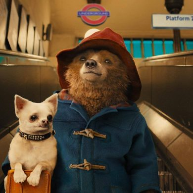 Paddington 2 Review Still 1