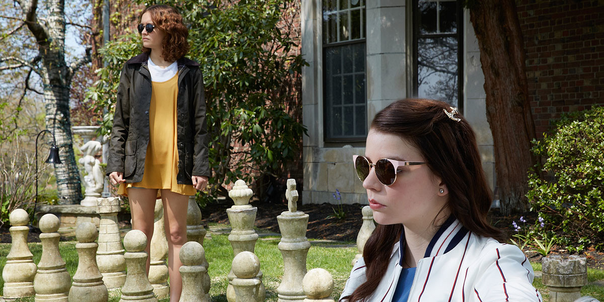 Thoroughbreds Still 1